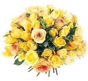 Цветы по городу Душанбе. Доставка букетов цветов по городу.