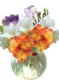 tvorim-cvetochnuyu-skazku01